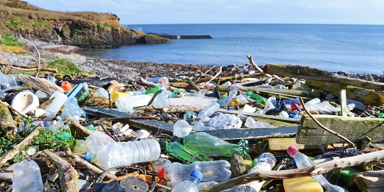 marine pollution opinion photo - Science Photo Library.jpg